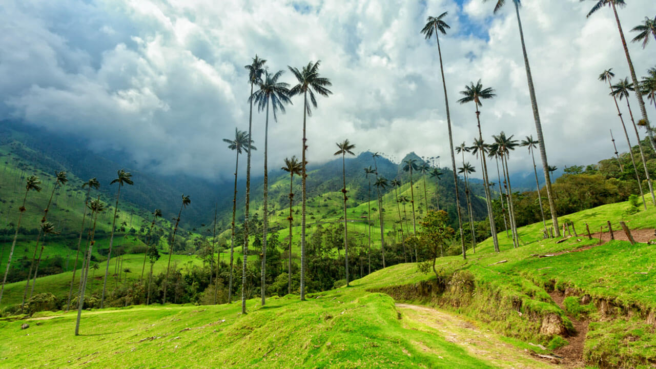 COLOMBIA – THE BEST OF