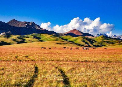 kirgistan-wyprawy-motocyklowe-dla-kobiet (13)