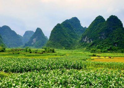 wietnam-offroad-motobirds (12)