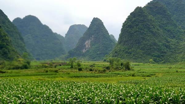 VIETNAM OFFROAD