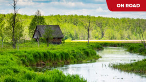 PODLASKIE - przez pradawną puszczę i lasy z wizytą u Tatarów Polskich