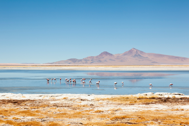 Najlepsze trasy motocyklowe Chile, część 2 – Północ